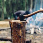 Comment couper un arbre avec les bons outils et les bons vêtements ?