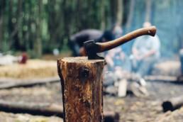 couper un arbre