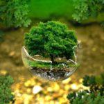 Prime et subventions d'état pour la transition écologique